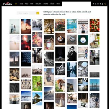 Paintable Photography WordPress Themes