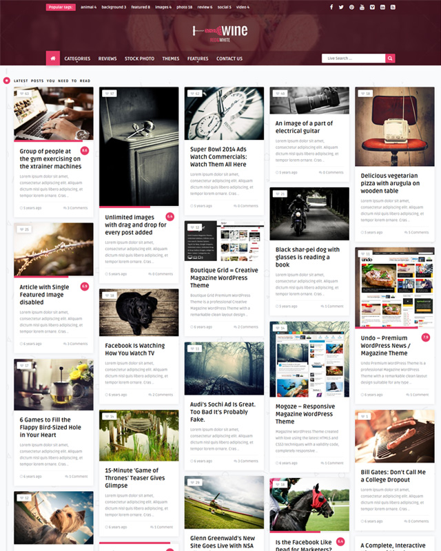 Review & Front-end Submission WordPress Theme