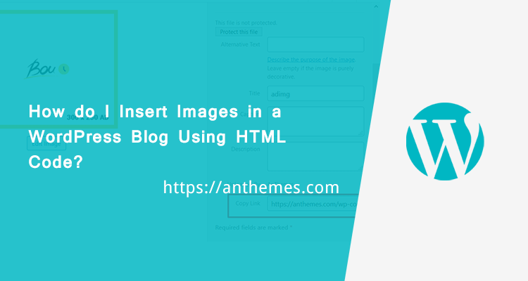 insert images in wordpress using html code